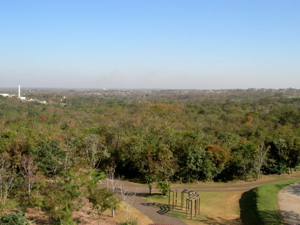 looking over the Parque Mãe Bonifácia from an observation tower
